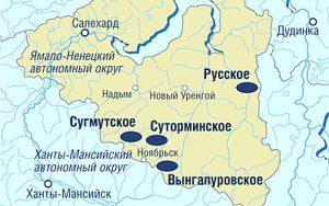 Карта Вынгапуровского месторождения